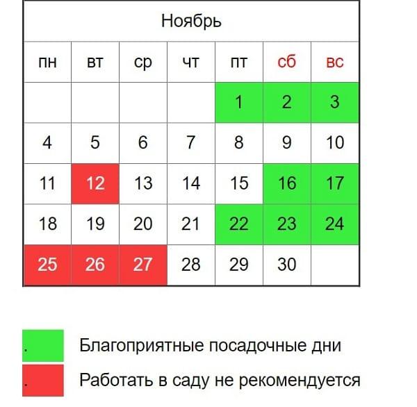 Когда сажать лук под зиму в 2019 году по лунному календарю в сентябре, октябре и ноябре