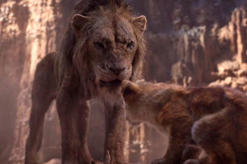 Король Лев 2019: премьера фильма, отзывы зрителей и критиков, чем отличается новая версия от оригинала по сюжету