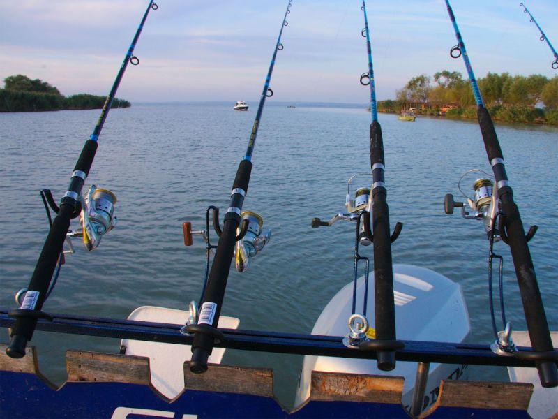 Клёв рыбы август 2019 календарь, точный прогноз по дням, благоприятные дни для рыбалки